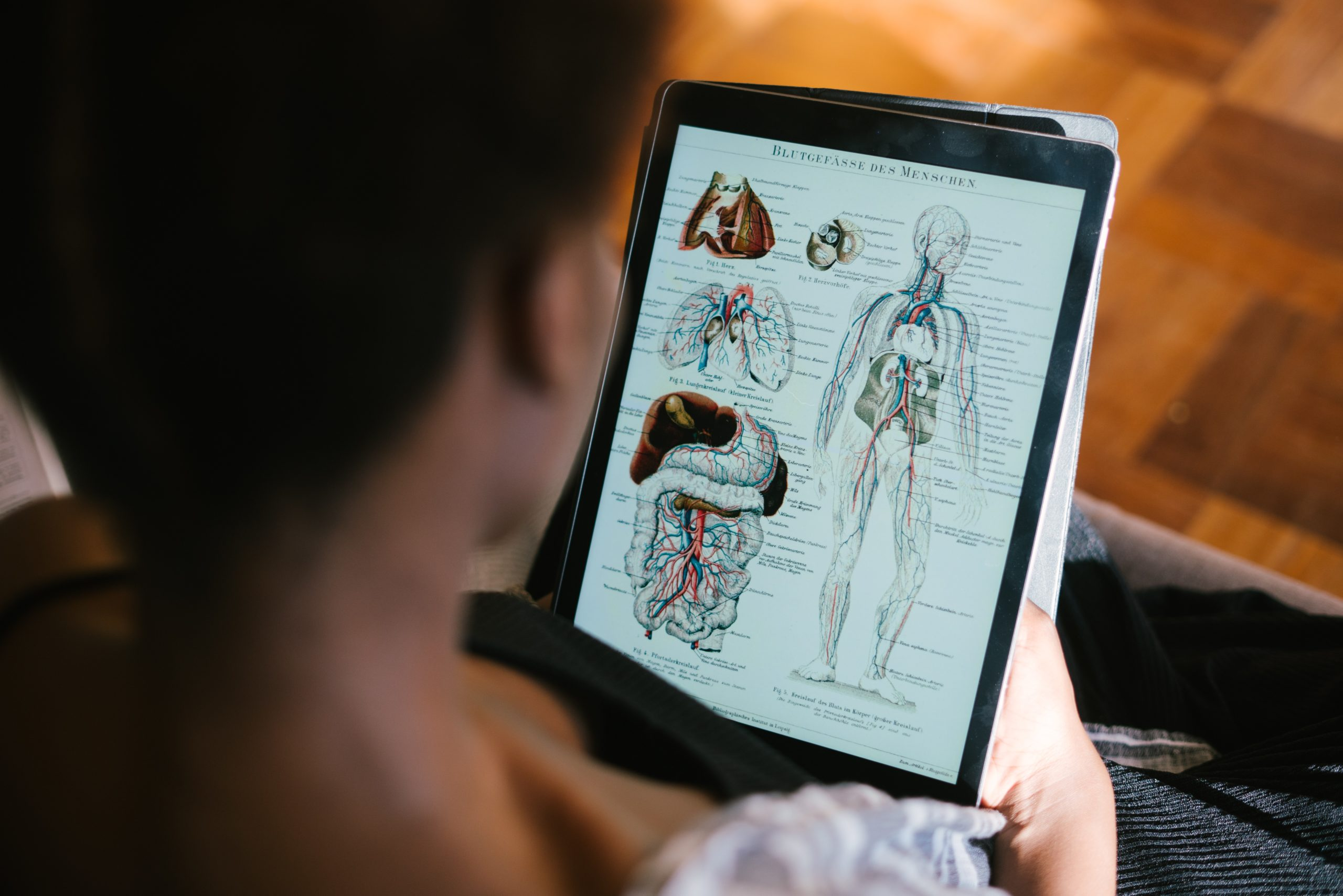 A photo of a woman using a tablet computer to study anatomy.